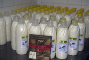 2ème Prix Challenge de la qualité du lait