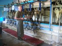 salle-de-traite-vache-laitiere-chateau-thierry